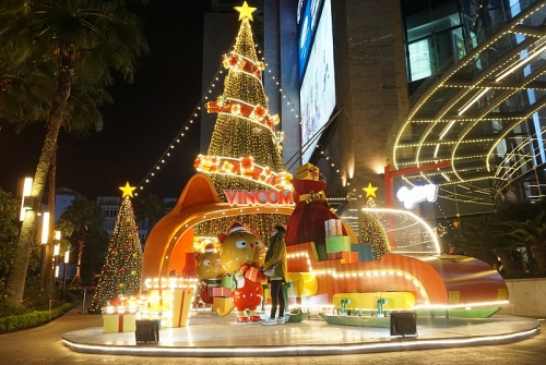 Huyền ảo cây thông đường phố trước thềm Giáng sinh