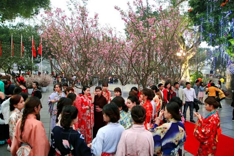 Thêm một lần, hoa anh đào rực sắc bên hồ Hoàn Kiếm