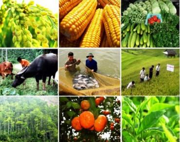 Lần đầu tiên Việt Nam tổ chức Hội chợ - Triển lãm Nông - Lâm - Ngư nghiệp quốc tế