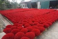 Hương Tết ở làng sản xuất tăm hương