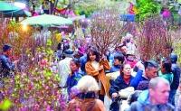 Từ làng hoa ra chợ tết