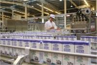 """Vinamilk & Mộc Châu Milk: """"Cái bắt tay"""" mở ra chương mới cho ngành chăn nuôi bò sữa Việt Nam"""