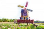 Sắc màu thung lũng hoa Hồ Tây
