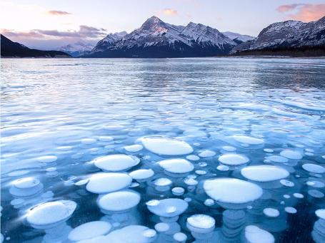 Bức ảnh này được chụp tại Alberta, hồ Abraham, nơi khí mê tan sinh ra từ lớp thực vật bị phân hủy nổi lên bề mặt và bị kẹt dưới băng, tạo thành lớp bong bóng. Mỗi năm sẽ có khoảng 7 phút đề các nhiếp ảnh gia ghi lại khoảnh khắc này trước khi có tuyết hay nhiệt độ ấm lên làm ảnh hưởng tới hồ.