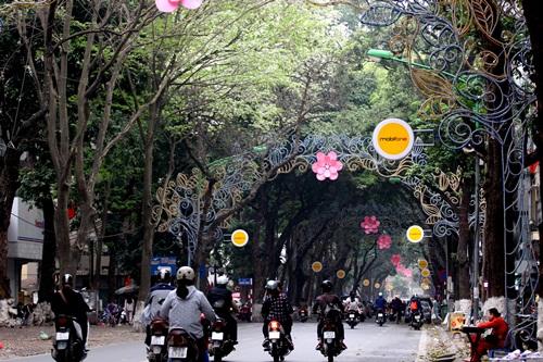 Trên dọc con phố Phan Đình Phùng mấy hôm nay tràn ngập sắc trắng tinh khôi.