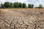 Ảnh hưởng của El Nino kéo dài đến hết tháng 6