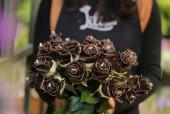 Ngày 8/3: 'Độc', lạ hoa hồng phủ chocolate Hà Lan, giá 'chát' vẫn 'cháy hàng'
