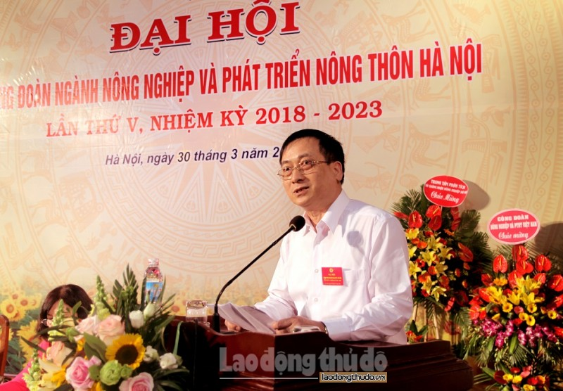 phat huy suc manh tap the huong ve co so cham lo tot nhat cho nld