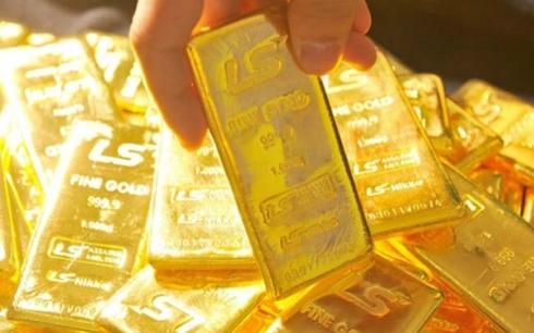 Giá vàng trong nước đồng loạt tăng nhẹ