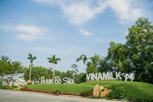 'Resort' bò sữa Vinamilk Tây Ninh: Ngôi nhà lý tưởng của những cô bò hạnh phúc