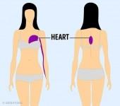 9 vị trí đau trên cơ thể là dấu hiệu của bệnh nguy hiểm