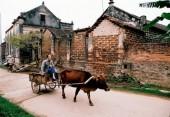 Bảo tồn di tích làng cổ Đường Lâm còn nhiều bất cập!