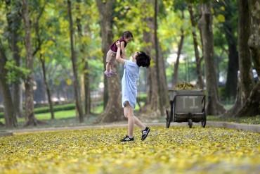 Hà Nội mùa lá rơi vàng phố