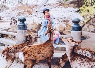 Bộ ảnh chứng minh Nhật bản là 'thiên đường' cho các thanh niên sống ảo