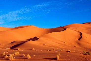 Tưởng Châu Phi là khô cằn, ai ngờ cũng có những khung cảnh hút mắt thế này