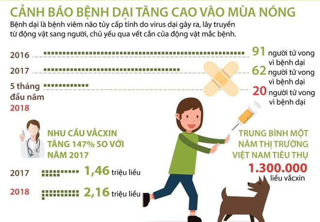 [Infographics] Đã có 20 người tử vong vì bệnh dại trong 5 tháng