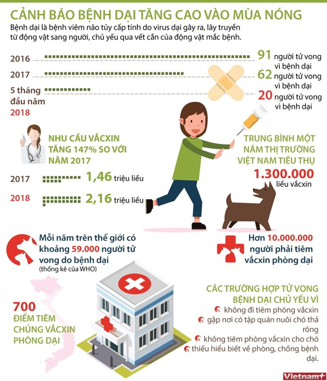 infographics da co 20 nguoi tu vong vi benh dai trong 5 thang