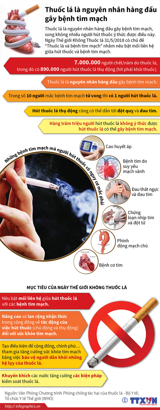 infographics thuoc la la nguyen nhan hang dau gay benh tim mach