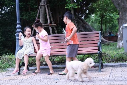 """Nói không với chó thả rông không rọ mõm: """"Đại náo""""  từ làng quê ra phố thị (Kỳ 1)"""