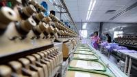 Thực thi EVFTA không thể thiếu kiến thức về phòng vệ thương mại