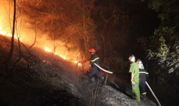 Vụ cháy rừng ở Sóc Sơn: Thiệt hại khoảng 5ha