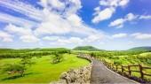 Đừng bỏ qua cơ hội đến đảo tình yêu Jeju Hàn Quốc