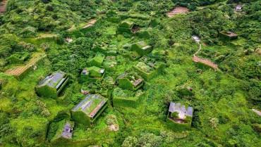 Hòn đảo nơi thiên nhiên nhấn chìm dấu ấn con người