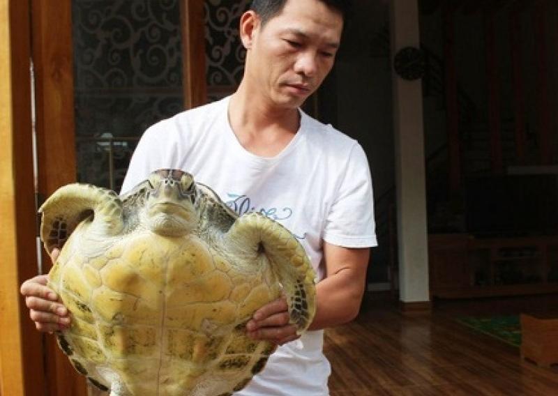 Người dân bỏ tiền mua cá thể rùa quý hiếm để thả về biển khơi