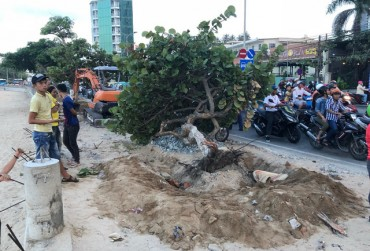Người đàn ông nằm dưới gốc cây bị xe múc va tử vong