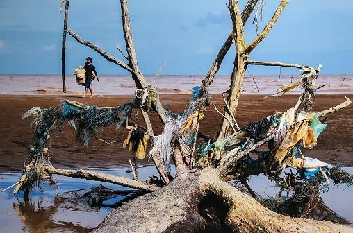 """Triển lãm """"Hãy cứu biển"""": Bảo vệ môi trường qua ngôn ngữ hình ảnh"""