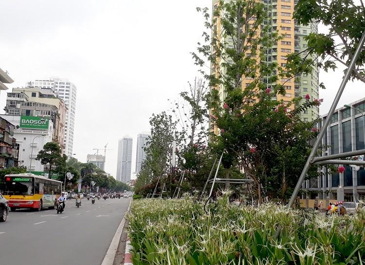 Tô điểm cho thành phố xanh