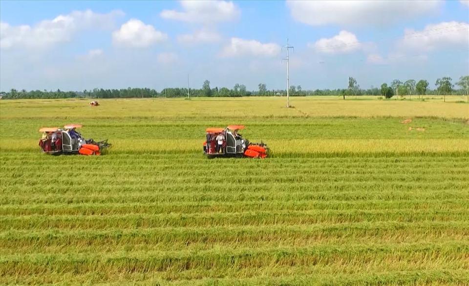 Chi tiết thủ tục tách thửa, hợp thửa đất đai theo quy định mới nhất
