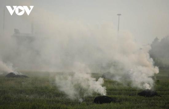 Đốt rơm rạ ở Hà Nội: Cần sự hỗ trợ của Nhà nước và nhà khoa học