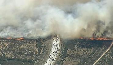 Cháy rừng lớn thiêu rụi hàng chục xe trên đại lộ ở Mỹ