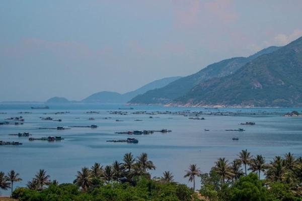 Clip của nhóm khám phá Nam Trung Bộ khiến người xem ngất ngây với vẻ đẹp đến nao lòng của nắng vàng, cát trắng, biển xanh.