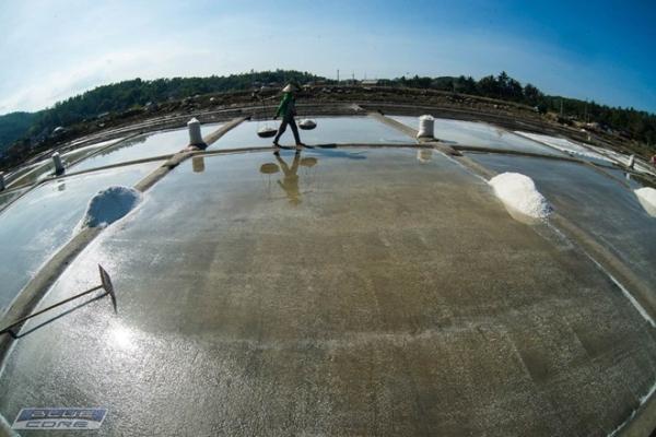 Ruộng muối và quang gánh nặng trĩu của người nông dân là hình ảnh làm nao lòng nhiều người con xa quê.
