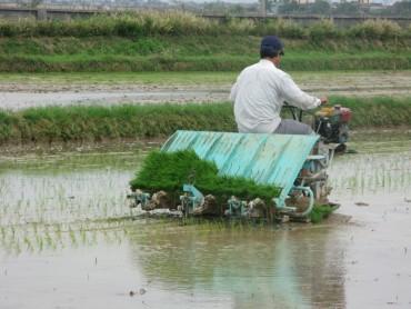 Dồn sức hoàn thành mục tiêu xây dựng nông thôn mới