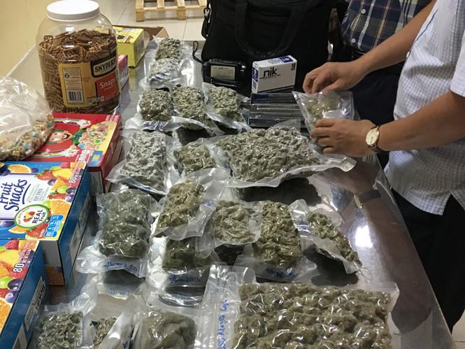 Liên tiếp phát hiện lượng lớn cần sa, ma túy về Việt Nam