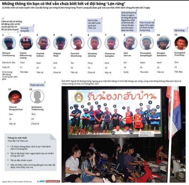 infographics nhung dieu ban chua biet ve doi bong lon rung