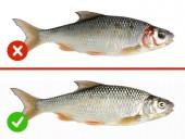 Cách nhận biết thực phẩm an toàn, không bị nhiễm độc