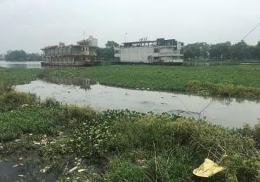 Bến thủy hồ Tây vẫn ô nhiễm