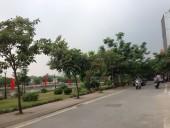 Hà Nội có thêm phố đi bộ Trịnh Công Sơn