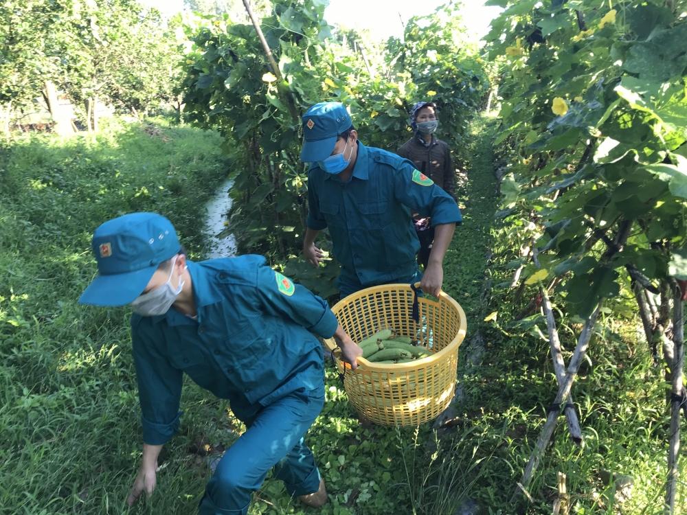 Tích cực trên tuyến đầu chống dịch, vừa giúp dân thu gom hàng nông sản