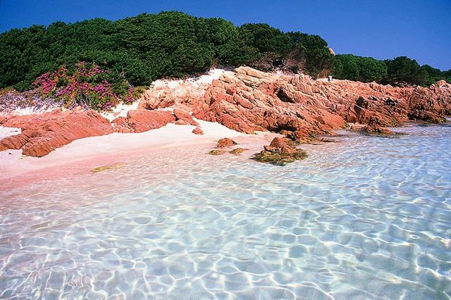 Những bãi biển cát hồng lãng mạn nhất hành tinh