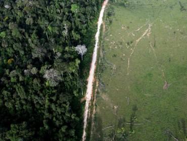 Những bức ảnh cho thấy con người đã phá hủy rừng Amazon như thế nào?
