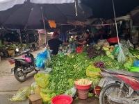 Phát triển ngành phân phối Việt Nam: Cân bằng giữa kênh phân phối hiện đại và truyền thống