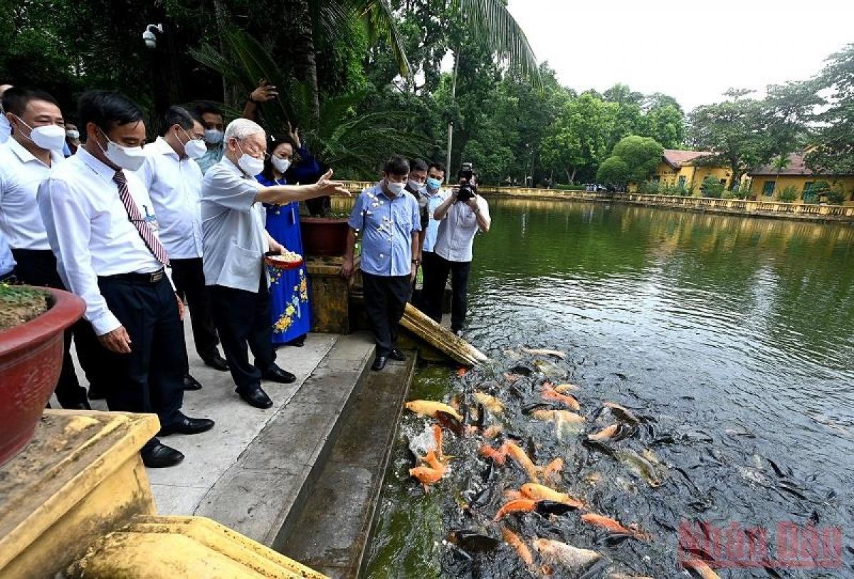 Tổng Bí thư Nguyễn Phú Trọng cho cá ăn tại ao cá Bác Hồ trong Khu Di tích Chủ tịch Hồ Chí Minh tại Phủ Chủ tịch. Ảnh: Đăng Khoa