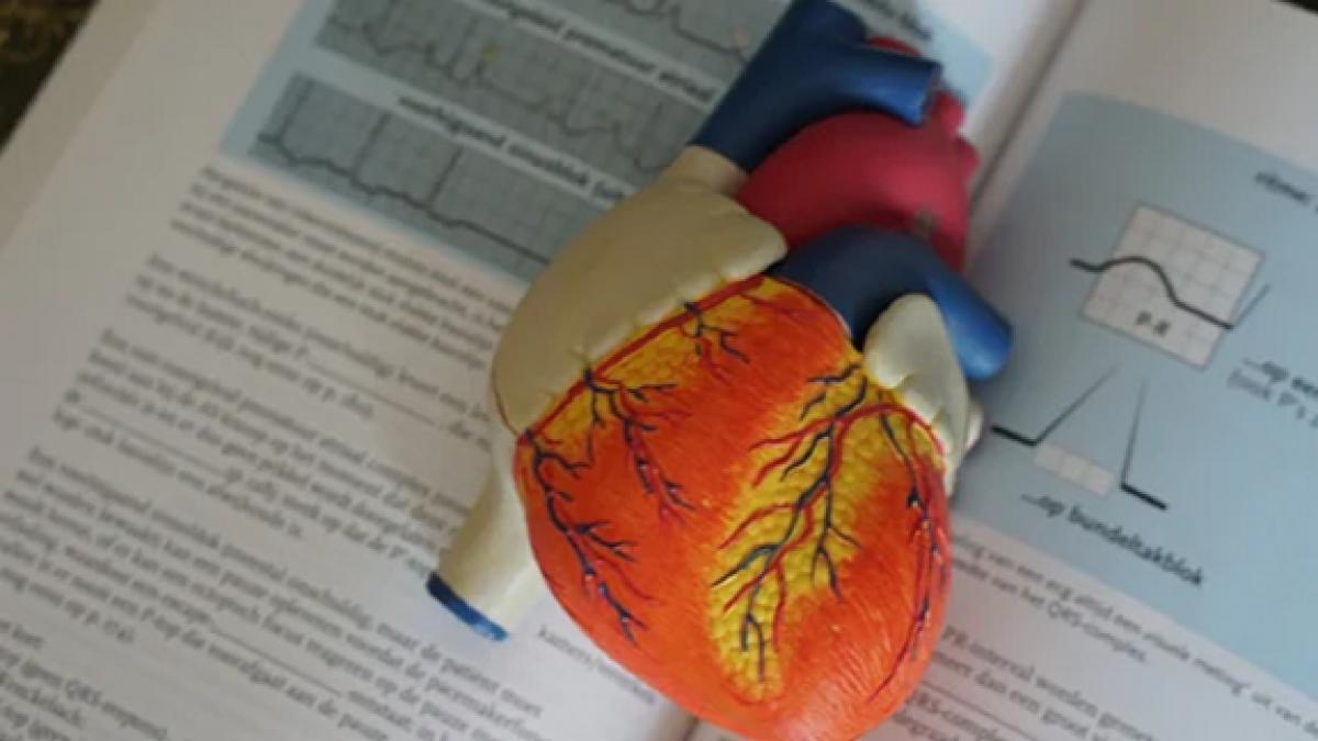 Lối sống cân bằng giúp giảm nguy cơ mắc bệnh tim ở người trẻ