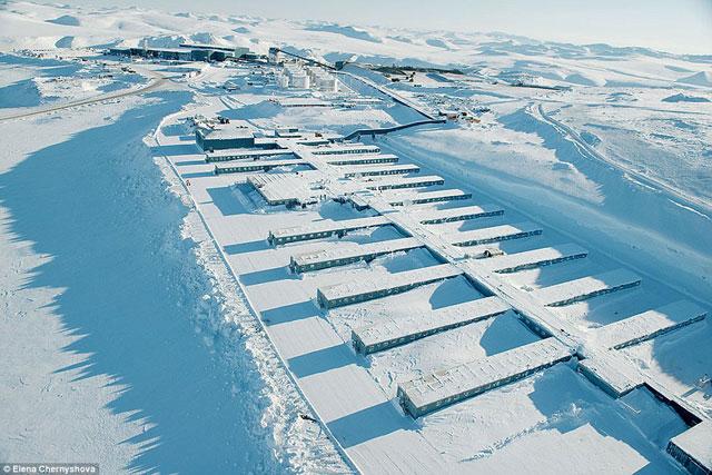 Ảnh: Cuộc sống trong mỏ vàng lạnh giá nhất thế giới - 1