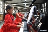 Kỷ lục Guinness hòa nhạc: 639 người chơi 666 chiếc đàn piano cùng lúc